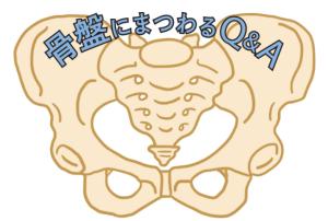 腰痛症 骨盤の画像
