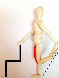四頭筋ストレッチ3 太もも前面のばし 足の甲をしっかり持つ